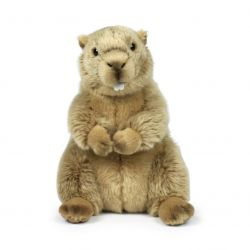 Peluche Marmotte 23 cm